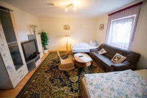ferienwohnung10-wohnzimmer-tv-betten-1