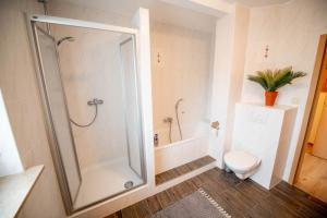 ferienwohnung11-bad-dusche-badewann-wc-2